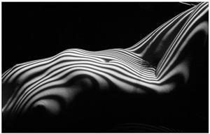nu zebre, new york, 2013 [iii] by lucien clergue